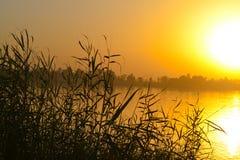 Sunset at Egyptian nile Royalty Free Stock Photos