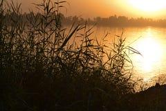 Sunset at Egyptian nile Stock Photography