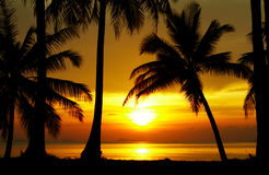 Sunset equator Royalty Free Stock Photos