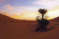 Sunset in the Erg Chebbi desert Morocco Africa Stock Photos