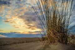 Espiguette beach in France. Sunset on Espiguette beach in France Royalty Free Stock Photos