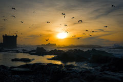 Sunset in Essaouira, Marocco Stock Photos