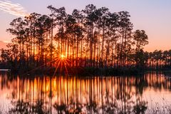 Sunset in the Everglades. Of florida royalty free stock photo