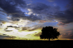 Sunset. Exceptional colors at the time the sun sets Royalty Free Stock Photo