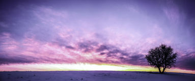 Sunset. Exceptional colors at the time the sun sets Royalty Free Stock Photography