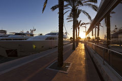 Sunset at the famous Puerto Portals in Majorca. Sunset at the famous Puerto Portals with luxury yachts in Majorca - Balearic Island from Spain. It is one of the Royalty Free Stock Image