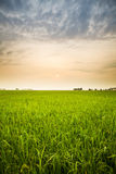 Sunset and farm Royalty Free Stock Photography