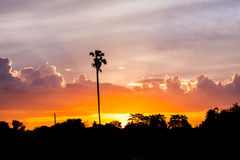 Sunset with farm Royalty Free Stock Photography