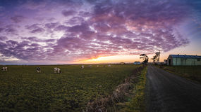Sunset at the Farm Royalty Free Stock Image