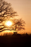Sunset farming Royalty Free Stock Image