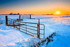 Sunset and fence with grassland in winter Royalty Free Stock Images