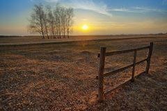 Sunset on the field Royalty Free Stock Photo