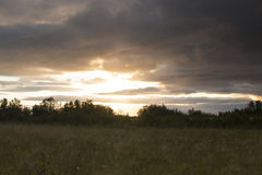 Sunset field clouds. Field with the sun just below the treeline at sunset Royalty Free Stock Images