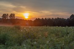 Sunset in a field in the countryside stock image