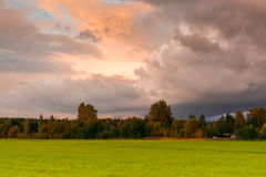 Sunset at the field with dark clouds in dramatic ton Stock Images