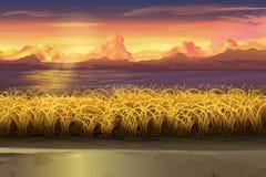 Sunset field landscape. Sunset, field vector landscape illustration Stock Photo
