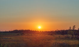 Sunset field Royalty Free Stock Images