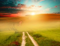 Sunset field and road. Photo of field with fresh green grass, setting sun and road; green, orange and blue colors Stock Photography