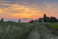 Sunset Field. Royalty Free Stock Photography