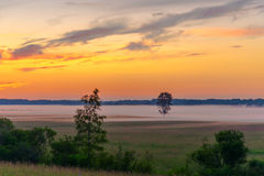 Sunset, field, tree, fog Stock Photography