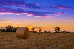Sunset field, tree and hay bale Stock Image