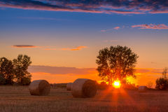 Sunset field, tree and hay bale Stock Images