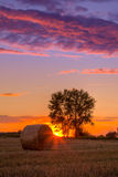 Sunset field, tree and hay bale Royalty Free Stock Photo