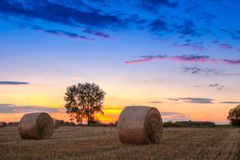Sunset field, tree and hay bale Stock Photography