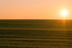 Sunset on a fields Stock Images