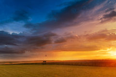 Sunset in fields in summer Royalty Free Stock Photo
