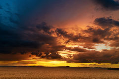 Sunset in fields in summer Stock Image