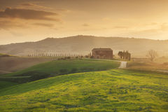 Sunset on the fields of Tuscany, Italy. Beautiful sunset near the town of Pienza in Tuscany, Italy royalty free stock image