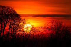 Sunset fire Royalty Free Stock Photo
