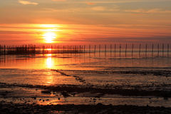 Sunset and Fishing Stakes. The sun sets in a vivid display of oranges and reds behind stake pole supports for fishing nets at the edge of the sea royalty free stock photography