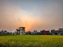 Sunset. Flat land. Sunset in the flat lands of Nepal. Countryside. Farm, Field royalty free stock photos