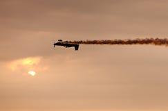 Sunset Flight Royalty Free Stock Photography