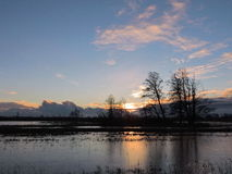 Sunset in flood field Stock Photos