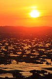 Sunset at flooded rice field Stock Photos