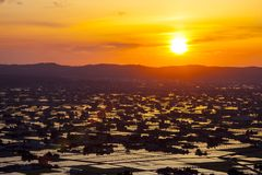 Sunset at flooded rice field Stock Photo