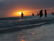 Sunset in Florida. People in the ocean on sunset background in Siesta Key beach in Florida Stock Images