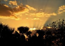 Sunrays coming out of clouds during sunset in Ft. Pierce, Florida with silhouette of palm trees framing photo Stock Photos