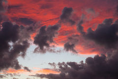 Sunset with fluffy clouds. Colored clouds when the sun is going beyond the horizon Royalty Free Stock Photo