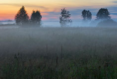 After sunset in foggy fields of Russia Royalty Free Stock Photo