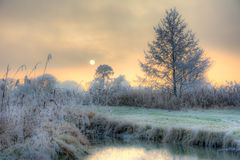 Sunset on a foggy winter day at the river Paar. In a landscape conservation area called Goachat near Schrobenhausen Bavaria, Germany Royalty Free Stock Photography