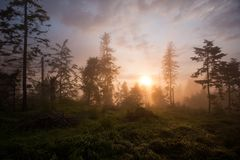 Sunset in forest. On ridge of  mountains Slovenské Rudohorie, Inner Western Carpathians, Slovakia Stock Photos