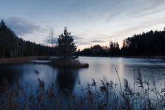 Sunset on forest lake Stock Photo