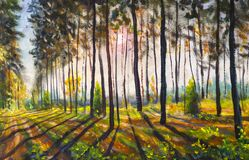 Sunset forest landscape painting Park, trees, sun rays