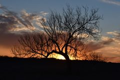 Sunset in Fort Worth Texas on Markum Ranch Road stock images