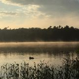 Sunset at frog pond Royalty Free Stock Photography