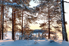Sunset on frozen winter lake Royalty Free Stock Photography